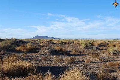 Deming NM Residential Lots & Land For Sale: $240,000