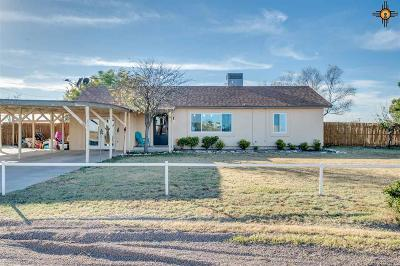 Hobbs Single Family Home For Sale: 6019 Greenwood Place