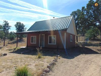 Catron County Single Family Home For Sale: 493 Starfire Loop