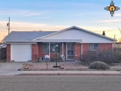 Las Vegas Single Family Home For Sale: 719 Coronado
