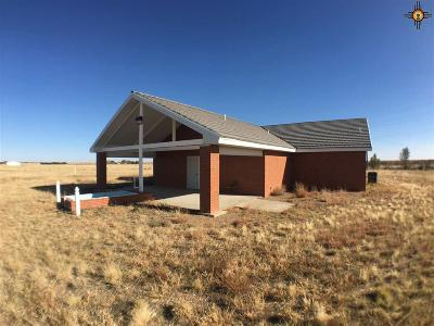 Portales Commercial For Sale: 41679 Us Highway 70