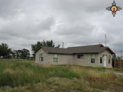 Portales Single Family Home For Sale: 757 S Roosevelt Road R 1/2