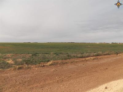 Texico NM Farm & Ranch For Sale: $198,000
