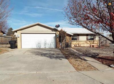 Las Vegas Single Family Home For Sale: 502 Christine Drive