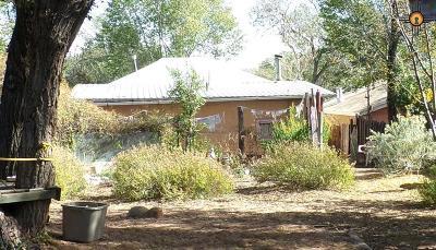 Las Vegas Single Family Home For Sale: 521 Chavez Street