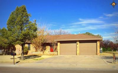 Hobbs NM Single Family Home For Sale: $235,000