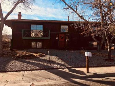 Gallup Single Family Home For Sale: 3708 E Dulce Ct.