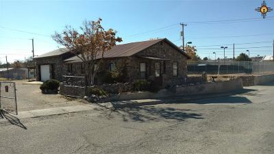 Sierra County Single Family Home For Sale: 116 W Fourth