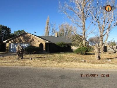 Portales Single Family Home For Sale: 617 E 18th Street