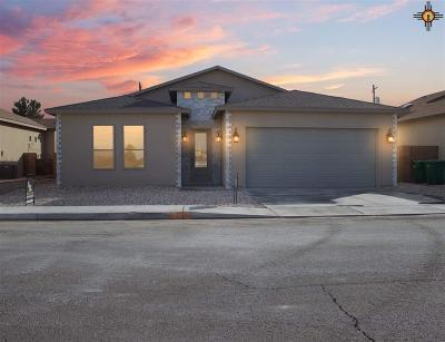 Lovington NM Single Family Home For Sale: $287,000