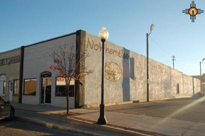 Portales Commercial For Sale: 214 S Main