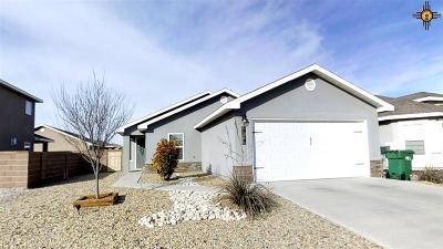 Hobbs Single Family Home For Sale: 4816 W Dark Horse Rd