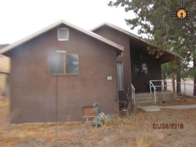 Sierra County Single Family Home For Sale: 124 N Pershing