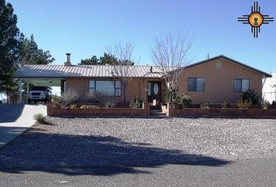 Sierra County Single Family Home For Sale: 302 Lakeshore
