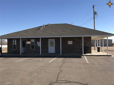 Curry County Commercial For Sale: 2309 W Grand
