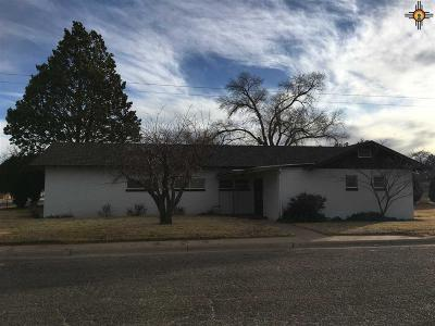 Portales Commercial For Sale: 1400 S Ave B