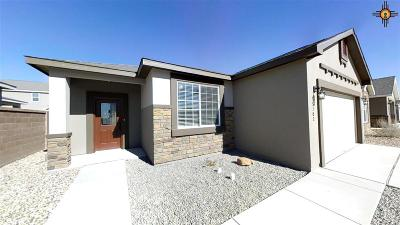 Hobbs Single Family Home For Sale: 5102 Steel Driver Rd