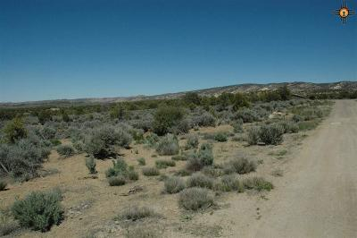 Residential Lots & Land For Sale: Tbd Arapahoe Lane