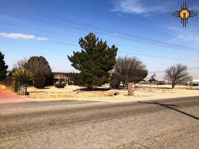 Hobbs Single Family Home For Sale: 3406 W Bender Blvd.