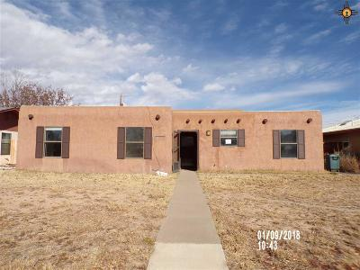 Single Family Home For Sale: 1009 Ivy