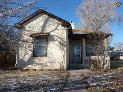 Single Family Home For Sale: 728 S 2nd