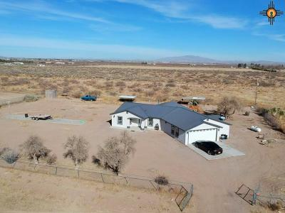 Deming Single Family Home For Sale: 4395 SE Creosote Rd