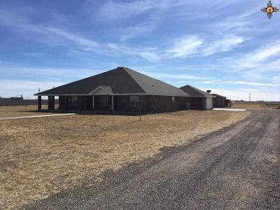 Clovis NM Single Family Home For Sale: $365,000