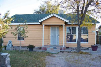 Hobbs NM Single Family Home For Sale: $110,000