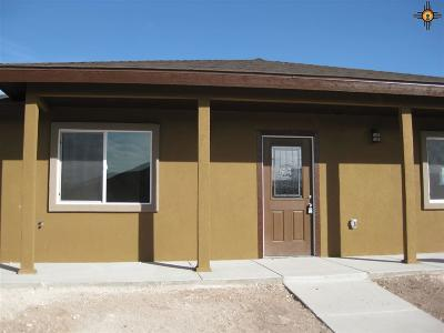 Hobbs NM Single Family Home For Sale: $172,000