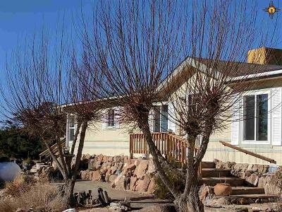 Catron County Single Family Home For Sale: 264 Agua Fria Trl