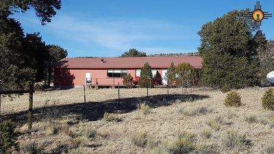 Catron County Single Family Home For Sale: 25 Arrowhead Lane