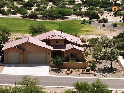 Sierra County Single Family Home For Sale: 203 Mesa Grande