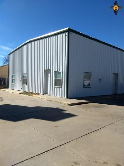 Curry County Commercial For Sale: 1120 N Prince St.