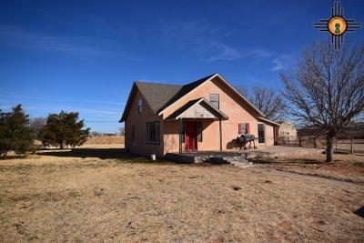 Portales Single Family Home For Sale: 1866 Nm 236