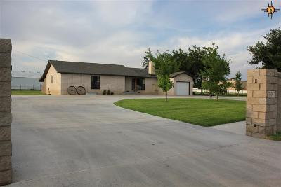 Portales Single Family Home For Sale: 1694 S Roosevelt Road 4