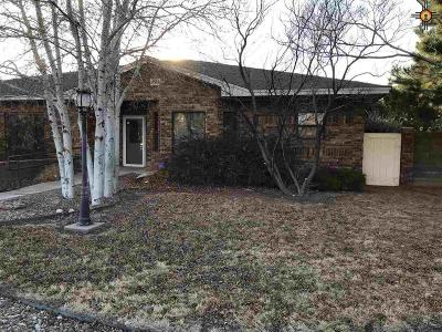 Portales Single Family Home For Sale: 1304 Oakwood Circle Dr.