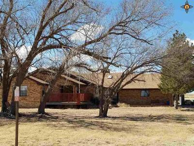 Portales Single Family Home For Sale: 770 S Roosevelt Road S 1/2