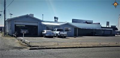 Clovis Commercial For Sale: 121 N Prince