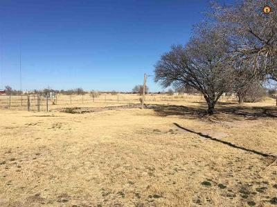 Portales Residential Lots & Land For Sale: 1101 E Elbe
