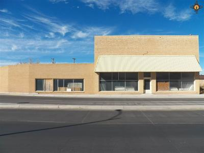 Roosevelt County Commercial For Sale: 507 E 2nd St