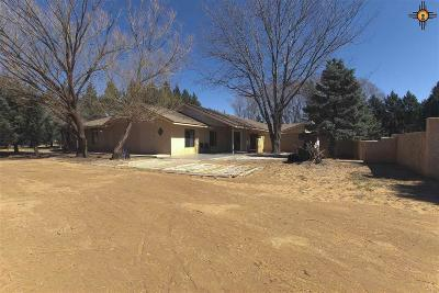 Portales Single Family Home For Sale: 279 S Roosevelt Road S