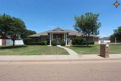 Clovis NM Single Family Home For Sale: $277,000