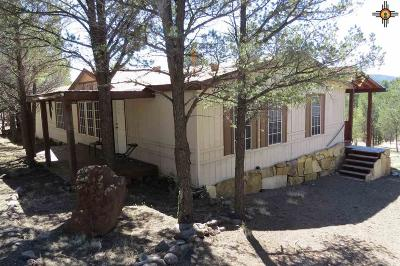 Catron County Single Family Home For Sale: 35 Elk View