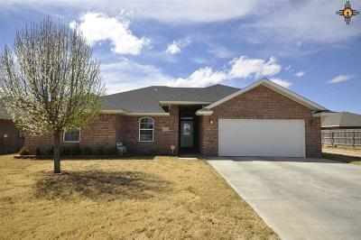 Single Family Home For Sale: 4508 Sandstone