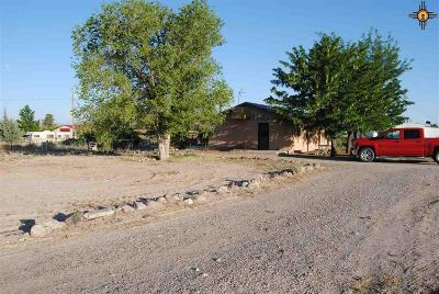 Sierra County Single Family Home For Sale: 262 Hall Road