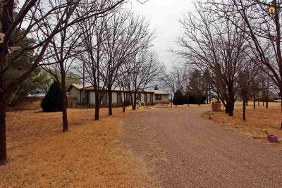 Clovis NM Manufactured Home For Sale: $158,900