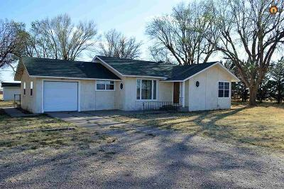 Texico Single Family Home For Sale: 263 Sr 77