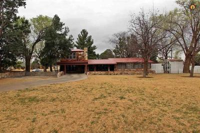 Portales Single Family Home For Sale: 1107 S Main St