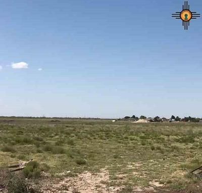 Hobbs Residential Lots & Land For Sale: 20 Acres N Butler