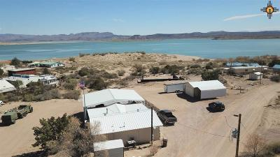 Sierra County Single Family Home For Sale: 411 Catfish